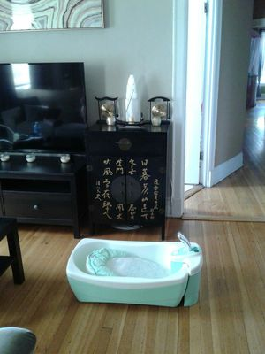 Summer Infant Bathtub for Sale in Chicago, IL