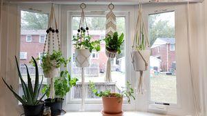 Indoor plant hangers, 5 total for Sale in Fort Belvoir, VA