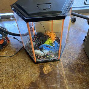 Glo Fish Tank for Sale in Dallas, TX