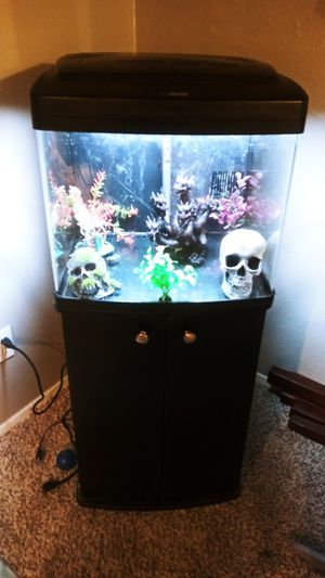 Bio cube saltwater/freshwater tank for Sale in Midland, TX