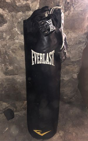 100 pound Everlast punching bag for Sale in Melrose, MA