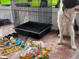 Bird Cage PLUS Kit for Sale in Lady Lake,  FL