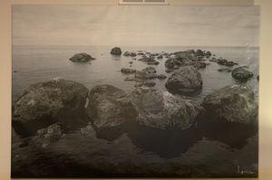 IKEA Ocean Shore Rock Canvas Wall Art for Sale in Naperville, IL
