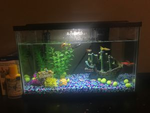 5 gallon fish tank for Sale in Bothell, WA