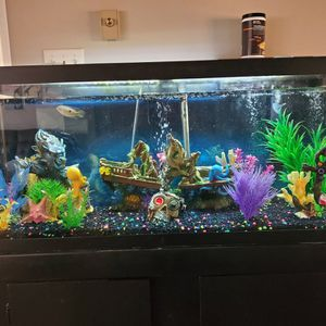 75 Gallon Fish Tank W/ Stand for Sale in Marysville, PA