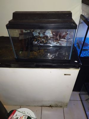10 gallon fish tank with filter and lid/light for Sale in Tamarac, FL