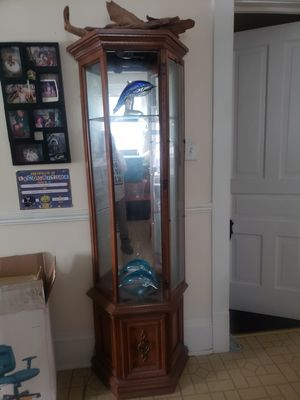 Lighted Curio Cabinet for Sale in Milwaukee, WI