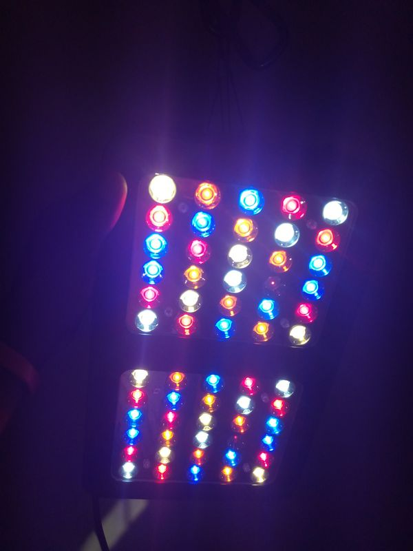 New LeD grow light