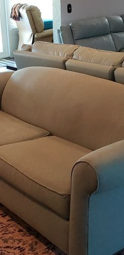 A Sleeper Sofa for Sale in Sun City Center,  FL