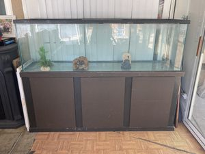 165g fish tank w/ rocks decor and fish Equipment for Sale in Paramount, CA