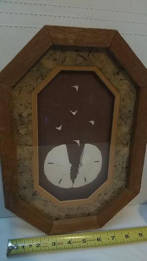 "Vintage Sea Shell Shadowbox ""Legend Of The Sandollar"" Coastal Decor for Sale in Corpus Christi, TX"