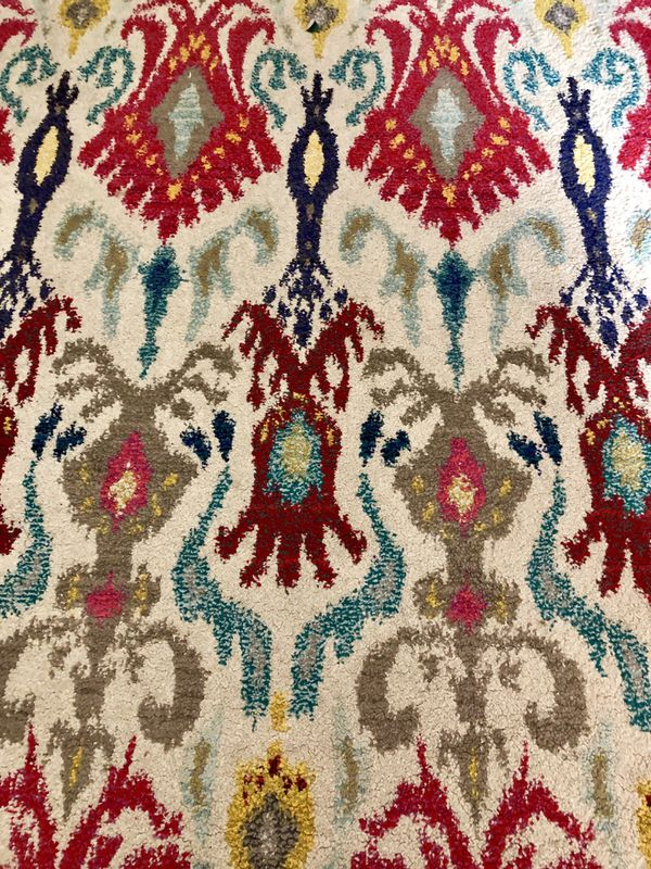 MOVING SALE! 4x6 Rug from rugsUSA