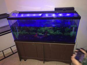 Fish Tank for Sale in McKinney, TX