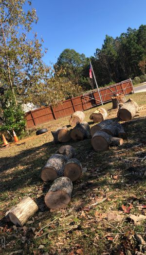 White oak logs fire wood for Sale in Virginia Beach, VA