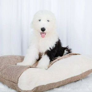 NEW BURROW CAT/DOG BED for Sale in Columbia, SC