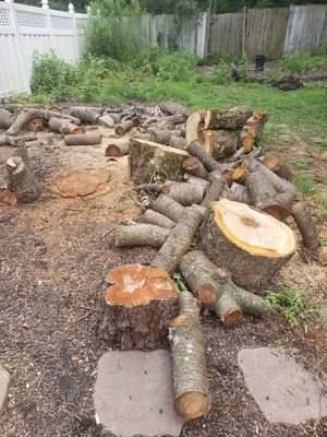 Wood free for Sale in Harrisburg, PA