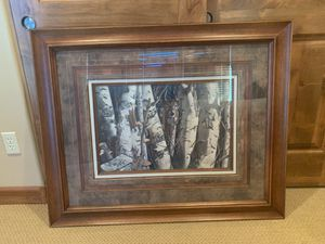 Wall art- white tail deer and birch trees for Sale in Payson, AZ