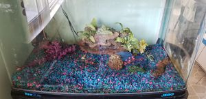 JEBO 40 gallon rounded edge fish tank for Sale in Downey, CA