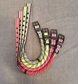 Dog collars for Sale in Pawtucket, RI
