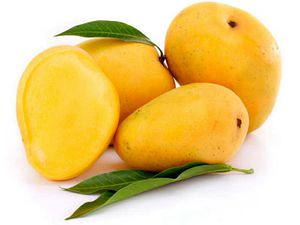 Indian mangoes: Kesar & Alphonso for Sale in Jersey City, NJ