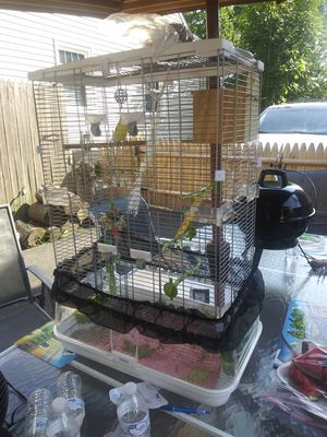 Bird cage for Sale in Stratford, CT