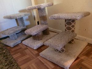 $25 each cat scratchers from HABICAT CONDOS for Sale in Tempe, AZ