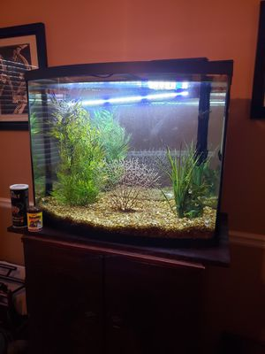 Beautiful Aquarium 48 Gallon Bow Front w/ accessories for Sale in Austell, GA
