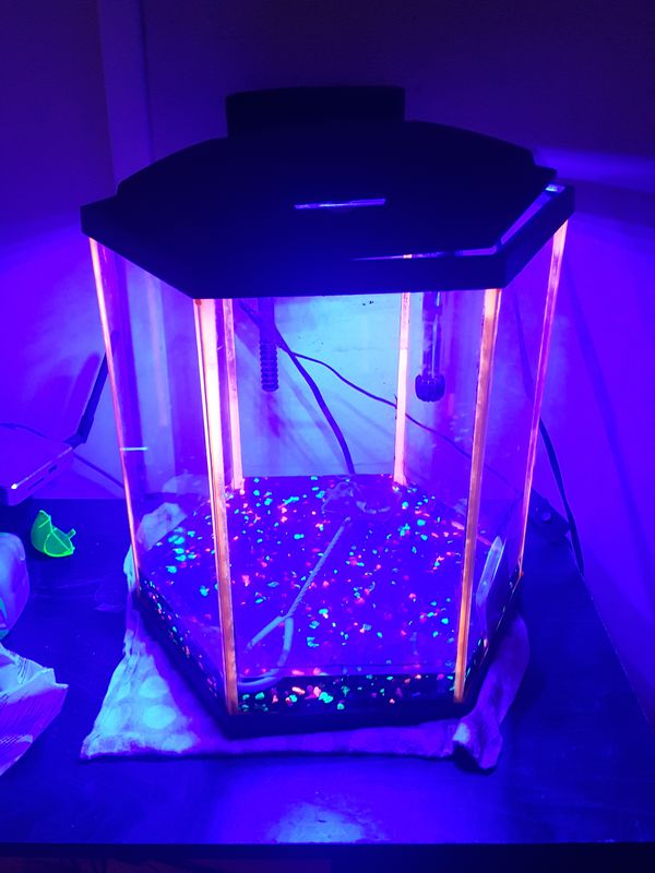 Glow in the dark Pentagon aquarium (8gallon)