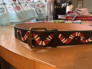 Gucci Coral KingSnake for Sale in Ruskin, FL