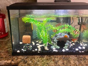 Fish tank / filter/ water temp control/ conditioner/ everything ! for Sale in Kansas City, MO