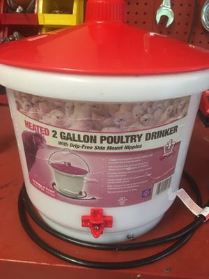 Heated 2 Gallon Poultry waterer for Sale in Ravenna, OH