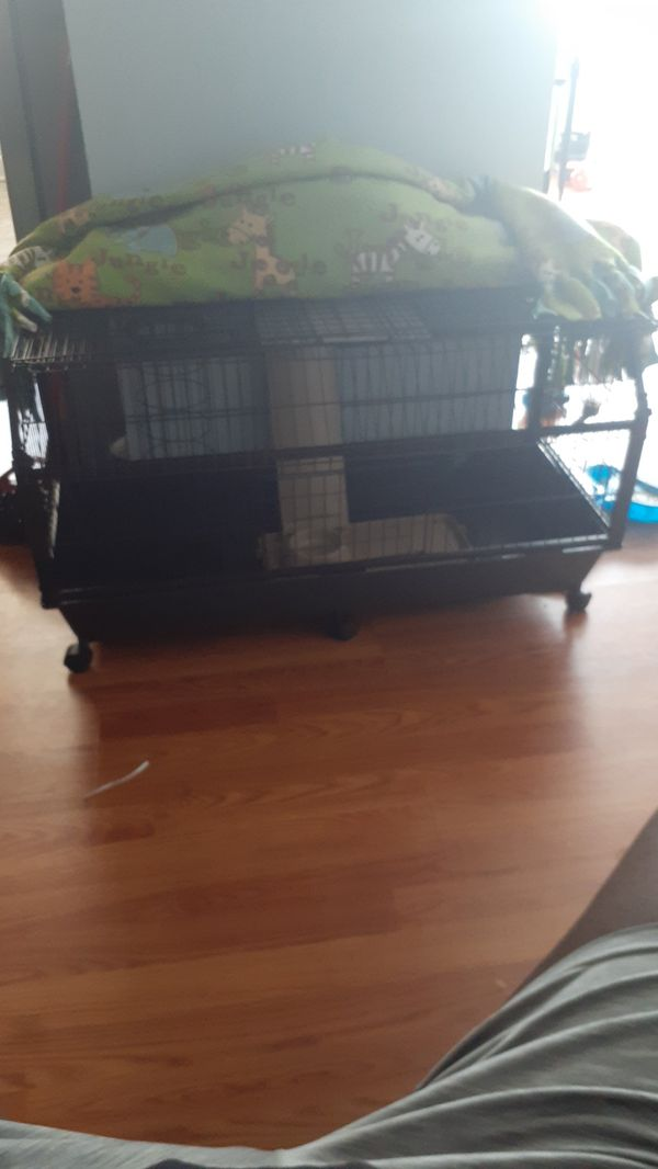 Large rabbit or ferret cage