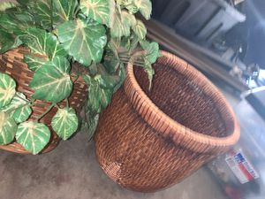 Fake plant for Sale in Tolleson, AZ