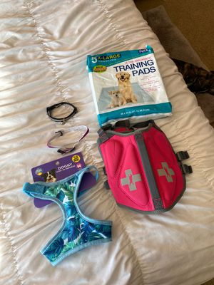 Lot of Dog & Cat Items! Collars/ Lifejackets.. for Sale in Julian, CA