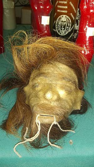 Shrunken head for Sale in Seminole, FL