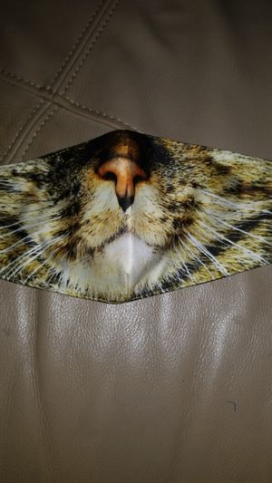 Mask cat for Sale in Tampa, FL