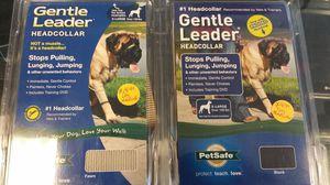 Headcollar dog for Sale in Orlando, FL