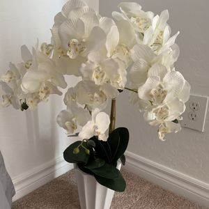 Flower for Sale in Henderson, NV
