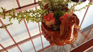 THANKSGIVING TURKEY PLANTER WITH PEBBLES & FRESH SUCCULENTS for Sale in Bonita, CA