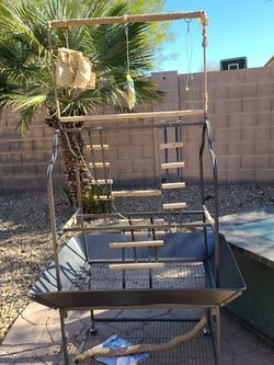 A Large Perch We Used It For My Two Great African Birds In My Amazon For They Loved It Very Very Clean for Sale in Laveen Village,  AZ