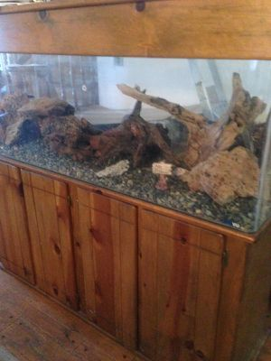 100 Gallon Freshwater TruVu Aquarium with Stand, Canopy, Lights, Magnum and power jets w undergravel Filters, Lava Rocks, Burl Wood for Sale in Los Angeles, CA