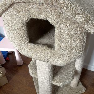 Cat House for Sale in Daly City, CA
