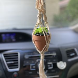 Mini Plant Hanger With Fake Succulent for Sale in Bedford, TX