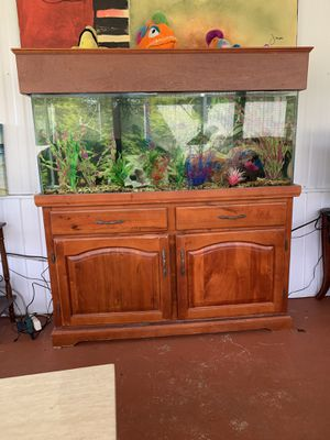 55 gallon fish tank, fully functional with over the side double filter and a fumal filter underneath. All rocks, plants, decorations and 6 fish are i for Sale in Riverview, FL