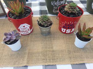 Customizable tins for Sale in Buckeye, AZ