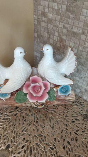 Doves for Sale in Audubon, NJ