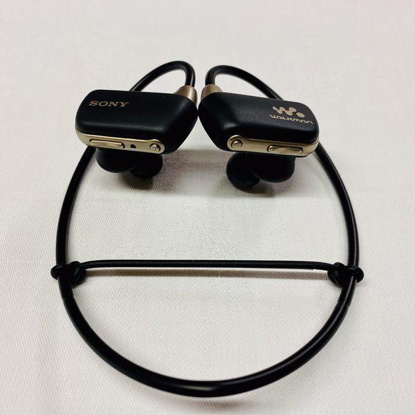 SONY Digital Music Player Waterproof Walkman Headphones Earbuds Microsoft Windows Apple NWZ-W273S
