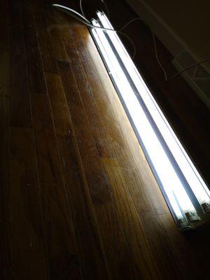 T5 grow lights for Sale in Roseville, MI