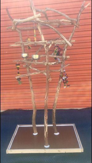 African Grey / Amazon perch tree - High Boy model ... great for those with kids or cats / dogs !! ;) for Sale in Irvine, CA