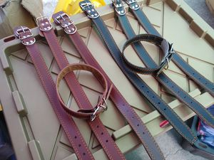 Dog collar for Sale in Colton, CA